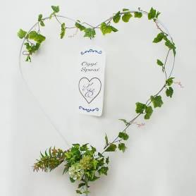 Noleggio cuore con targa personalizzata