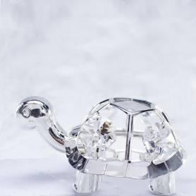 tartaruga confezionata