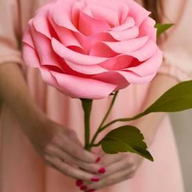 Rosa gigante di carta