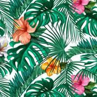 Feste e Tema Tropicale per adulti - Festa e Regali